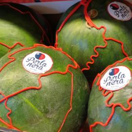 Watermeloen pitloos /  extra zoet!  / Italië / 1stuks,  ca 5 kg