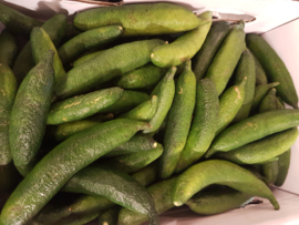 Fingerlime | Lime kaviaar | rond / Marokko / Fingerlime / citrus kaviaar / Kleur: pale-green/ 3 stuks