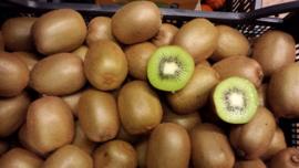 Kiwi Groen  | Nieuw Zeeland | Doos 5,6 kg