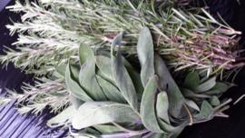 Verse kruiden / Salie / Salvia fresca in mazzi /  Emilia Romagna Italie / bos 100gram -  levering vanaf  donderdag 26 september