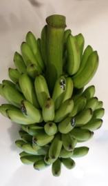Banaan / Babybanaan aan stam / Baby Stem / Bananitos /  teelt: regulier / Colombia / levertijd ca 7 dagen / tros aan stam (totaal ca 7 kilo waarvan ca 4,5-5 kilo babybanaan)