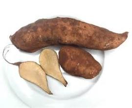YACON | appelwortel | poire de terre | TEELT REGULIER-Peru |doos 1,5kg