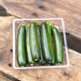 Courgette groen mini / Zuid-Afrika / schaaltje 200gram (ca 6 stuks)