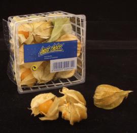 Physalis | Kaapse goudbes | Goldenberry | Poha | Incabes /  Colombia / bakje 100gram
