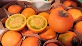 Naranjilla / Lulo / Vers / Colombia / 2,5 kilo
