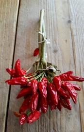 Peperoncino picante in mazzi / Gedroogde pepertjes / Chilipepertjes in bosjes / Chili Calabrese / Calabrese chilipepers / regio Emilia Romagna-Italië / bosje
