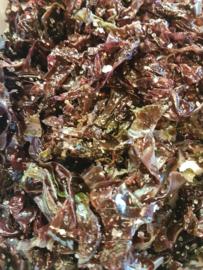 *BIO - FRANKRIJK | Zeewier / Gezouten zeewieren / Zeewier Dulse /  Bretagne / bakje 100gram