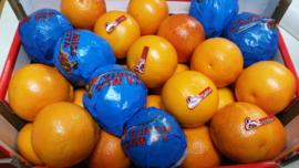 Bloedsinaasappel Tarocco / vruchtvlees lichtrood /Teelt regulier Italië / 1 kilo (CA 4-5 STUKS) / Uit het seizoen, leverbaar vanaf december