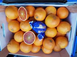 BLOEDSINAASAPPEL MORO  teelt: biologisch/ Sicilië / kist 10 kilo (ca 60 stuks)