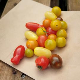 Cherry mix carnival | Gekleurde cherry tomatenmix | SPANJE | 500gram