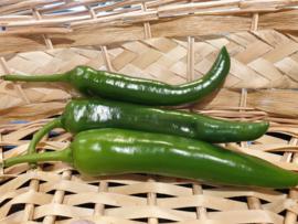 PEPERS GROEN | Spaanse groene peper / TEELT REGULIER-NL |  200GR