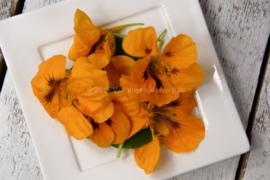 Capuceine bloemen / eetbare bloemen / schoon geteeld - Israel / 4 bakjes (ca. 25 stuks)