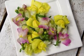 Leeuwenbekjes / eetbare bloemen / schoon geteeld - Israel / 4 bakjes (ca. 40 stuks)