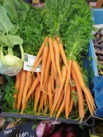PEEN | BOSPEEN BIO - NL |  1BOS (ca 300-400gram wortel)
