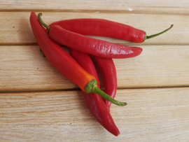 PEPERS ROOD | SPAANSE RODE PEPERS  | NL |  200GR