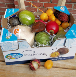 Tropische verrassing Box | Doos met exotische vruchten inclusief beschrijving | ca 2,2 kilo  / Aanbieding geldig t/m vrijdag 15 november