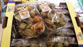 Physalis | Kaapse goudbes | Goldenberry | Poha | Incabes / teelt: regulier - Colombia / bakje 100gram