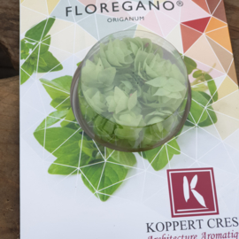 Floregano | Wit-Lichtgroen | Koppert cress | teelt: schoon-NL |2 bakjes (2x20 stuks)