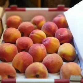 Perzik / geel vruchtvlees / klasse A / teelt: regulier - Zuid-Afrika / doos 18 stuks