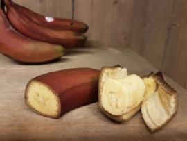 Banaan / Rode bananen/ Sri Lanka / 1 kilo