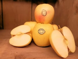 GOLDEN DELICIOUS | TEELT: REGULIER-ITALIE | 1 KILO
