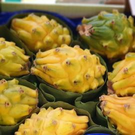 Pitahaya / Pitahaya | Wit vruchtvlees met gele schil / Zoet  / COLOMBIA/ 10 stuks (3,5 KG)