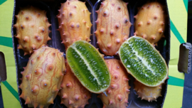 Kiwano / Horned melon  /FRANKRIJK   / 10 stuks (2,4 kilo)