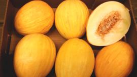 HONEY DEW MELOEN | TEELT REGULIER SPANJE | doos 8 STUKS (9 kilo)