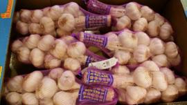 knoflook roze  | Roze kwaliteits knoflook uit Spanje Murcia  | Doos 6 x 1 kilo streng + 6 haken