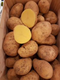 Oer aardappelen / Adean Sunside | Oeraardappel | teelt regulier - Frankrijk / 500gram
