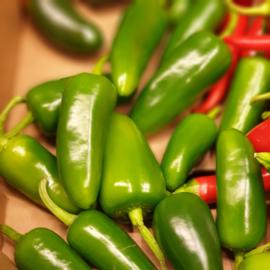 Jalapeno Peper GROEN / Jalepeno / teelt: regulier - Spanje / 250 gram