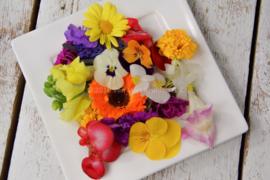 Bloemenmix / Eetbare bloemen / teelt: schoon geteeld - NL / per bakje (ca. 10 stuks)