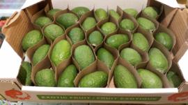 Feijoa / Fejioa / Ananasguave / Guavasteen /  Colombia / doos ca. 2kg (ca 25-30 stuks)