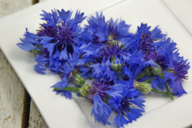 Korenbloem / eetbare bloemen / schoon geteeld - Israel / 4 bakjes (ca. 35 stuks)