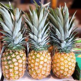 Vliegtuig ananas / natuurrijp geoogst  /Costa Rica /  1 stuks (groot, ca 2kg)