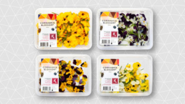 Cornabria Blossom | Bosviooltje | Viooltjes | Koppert Cress |  2x 50 (geen keuze in kleur)