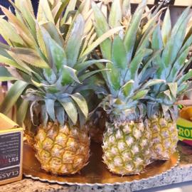 Ananas | Baby ananas / Mini ananas / rijp geoogst / Mauritius / 1 stuks