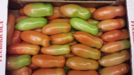 Pomodori San Marzano tomaten / bio - Campania - Italie / 500gram (ca 3-4 stuks)