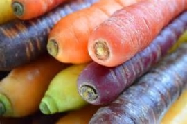 RAINBOW PEEN | MULTICOLOR | WORTEL MIX | BIO-NL | 1KILO