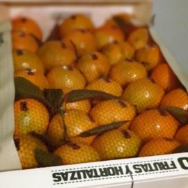 Mandarijn Clementine Clemenvilla/ met blad / teelt: regulier  / Spanje / kist 90 stuks (10 kilo)