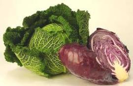 RODEKOOL | BIO-Italië nieuwe oogst | 1ST  (ca 800gram)