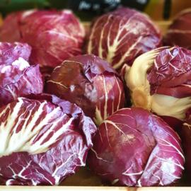 RADICCHIO ROSSO SLA | TEELT REGULIER -  ITALIE | | kist 9 krop (3 kilo) | Aanbieding geldig t/m vrijdag 15 november
