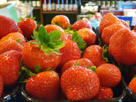 Aardbeien | Variëteit: Limalexia | Teelt: regulier - Noord-Nederland  | 500gram