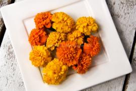Afrikaantjes / eetbare bloemen / Israël / 4 bakjes (ca 35 stuks)