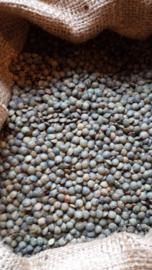 Groene linzen / soortgelijk aan Puy linzen / Frankrijk / Teelt: Traditioneel / kwaliteit extra / Oogstjaar 2018 / 0,5 kilo