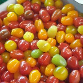 Cherry mix carnival | Gekleurde cherry tomatenmix |  NL | doos 3 KILO