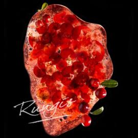 Cranberry Pureé | Ponthier | zak 1000ml / t.h.t. 04-03-2020