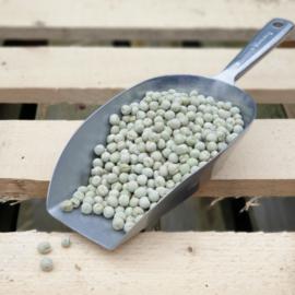 Groene erwten / Noord-Holland / Oogstjaar 2021 / 0,5 kilo