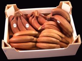 Banaan / Rode bananen/ teelt regulier - Ecuador / doos 9 kilo
