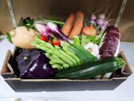 Biologische groentenbox   doos met verschillende soorten   Veggie Veg Box Organic   ca 5kilo